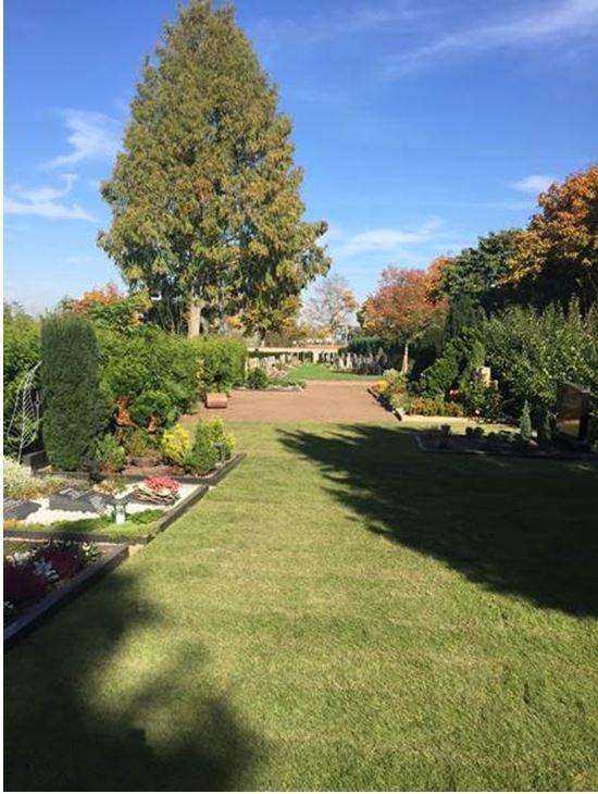 Rollrasen Friedhof.JPG